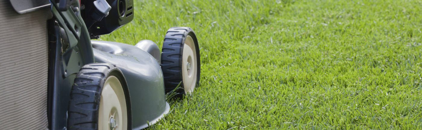 All Service Lawn Care Springfield Mo Grass Mowing